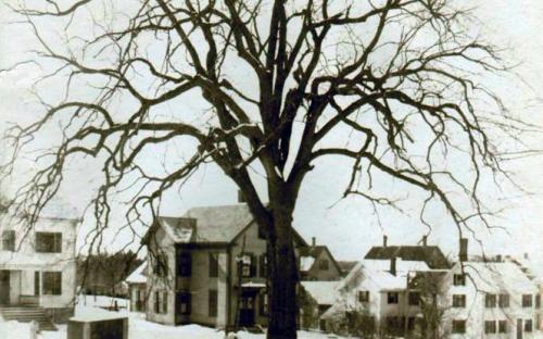10-12-14 Brook Street c. 1900