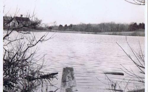 Holt's pond at 326 South Main