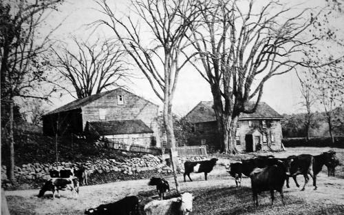 Ben Abbott Homestead & Argilla Rd. c. 1900