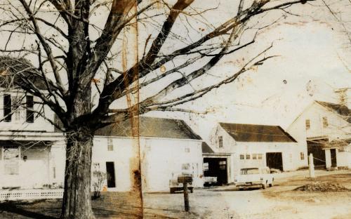 The farm in 1965