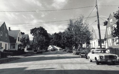 Brechin Terrace facing west - 1980