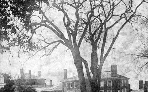 Elm Sq. 1867 Hay Scales platform below Elm tree - Holt - Osgood Brick Block