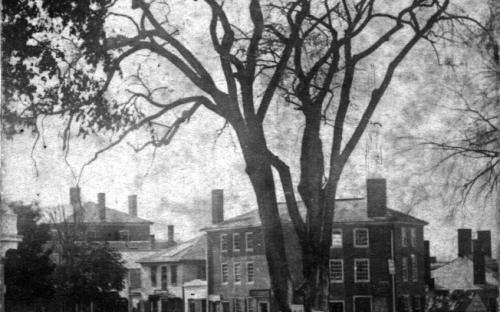 Carter Brick Block Elm Sq. and first market building on right circa 1865