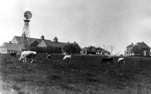 Hood Farm circa 1900